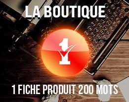 1 Fiche Produit 200 mots