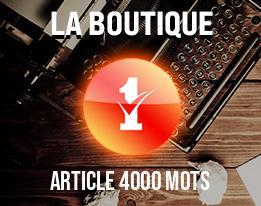 Article 4000 mots