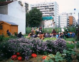 Jardins communautaires - Interview