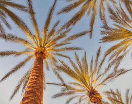 Les bienfaits du massage californien